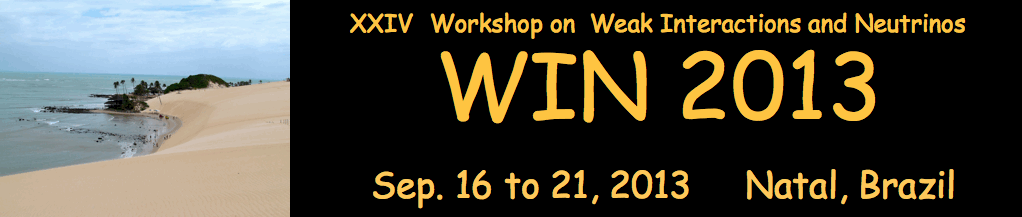 XXIV Workshop on  Weak Interactions and Neutrinos - WIN'13