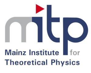 MITP Workshop on T violation and CPT tests in neutral-meson systems