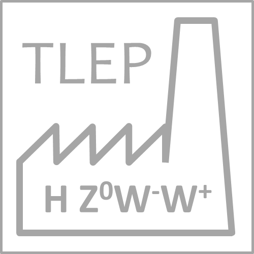 5th TLEP Workshop - TLEP physics and technology