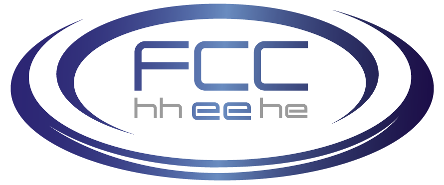 "FCC-ee Mini-Workshop: ""Physics Behind Precision"""