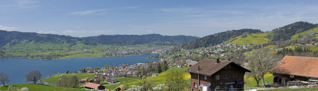 View of Ägerisee