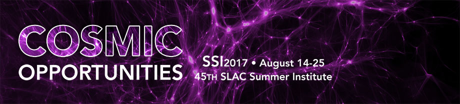 45th SLAC Summer Institute