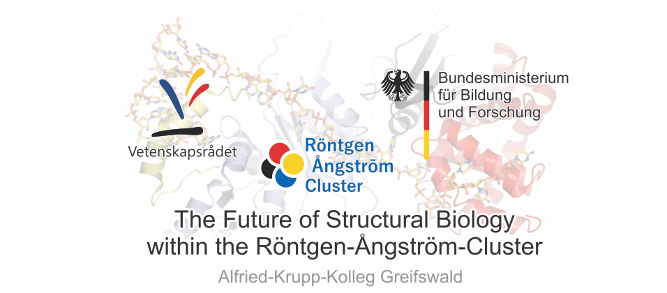 The Future of Structural Biology within the RÅC