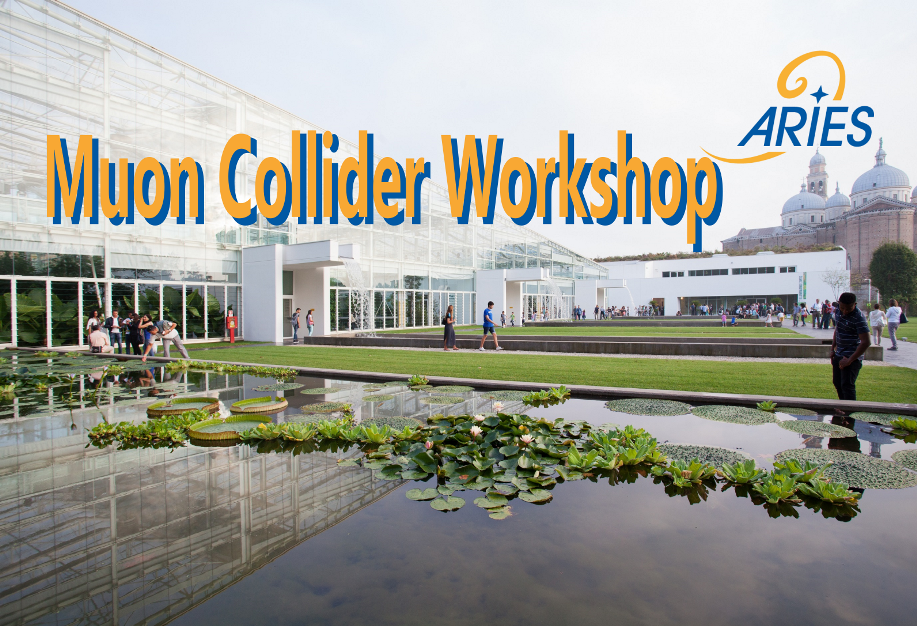 Muon Collider Workshop 2018